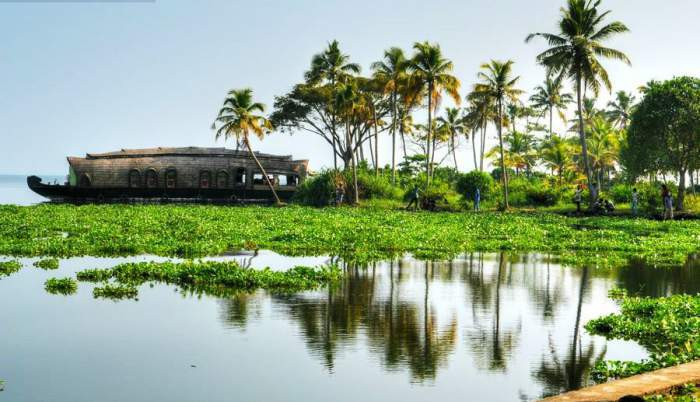 What are the things that must do while visiting Kerala